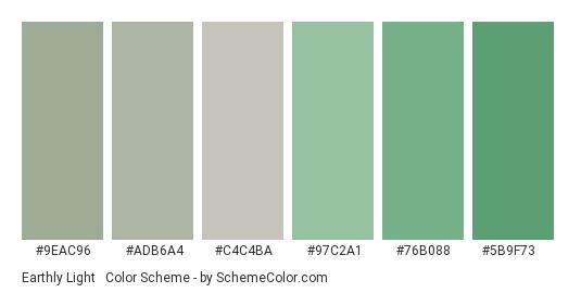 Earthly Light & Dull - Color scheme palette thumbnail - #9eac96 #adb6a4 #c4c4ba #97c2a1 #76b088 #5b9f73