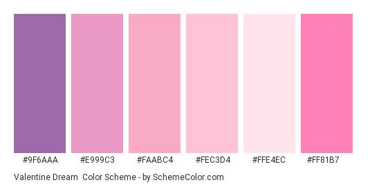 Valentine Dream - Color scheme palette thumbnail - #9f6aaa #e999c3 #faabc4 #fec3d4 #ffe4ec #ff81b7