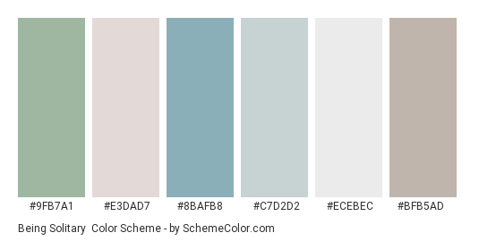 Being Solitary - Color scheme palette thumbnail - #9fb7a1 #e3dad7 #8bafb8 #c7d2d2 #ecebec #bfb5ad
