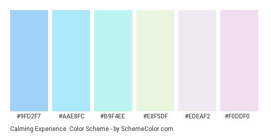Calming Experience - Color scheme palette thumbnail - #9fd2f7 #aae8fc #b9f4ee #e8f5df #edeaf2 #f0ddf0