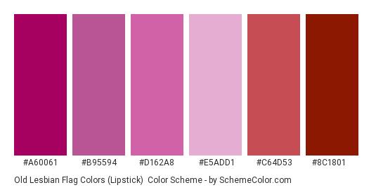 Old Lesbian Flag Colors (Lipstick) - Color scheme palette thumbnail - #A60061 #B95594 #D162A8 #E5ADD1 #C64D53 #8C1801
