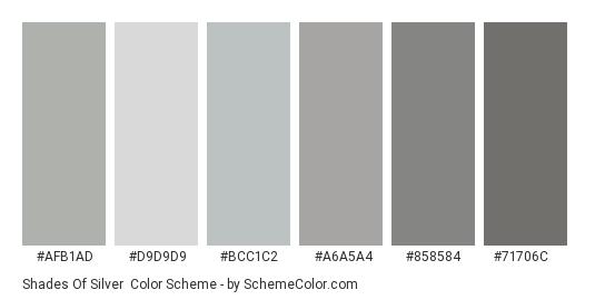 Shades of Silver - Color scheme palette thumbnail - #AFB1AD #D9D9D9 #BCC1C2 #A6A5A4 #858584 #71706C