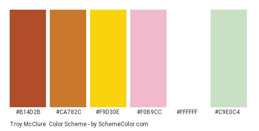 Troy McClure - Color scheme palette thumbnail - #B14D2B #CA782C #F9D30E #F0B9CC #FFFFFF #C9E0C4