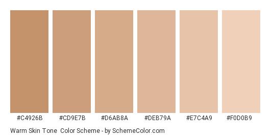 Warm Skin Tone - Color scheme palette thumbnail - #C4926B #CD9E7B #D6AB8A #DEB79A #E7C4A9 #F0D0B9