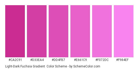 Light-Dark Fuchsia Gradient - Color scheme palette thumbnail - #CA2C91 #D33EA4 #DD4FB7 #E661C9 #F072DC #F984EF