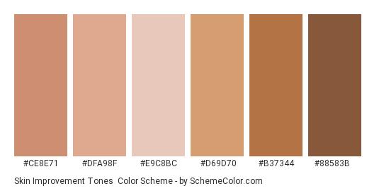 Skin Improvement Tones - Color scheme palette thumbnail - #CE8E71 #DFA98F #E9C8BC #D69D70 #B37344 #88583B