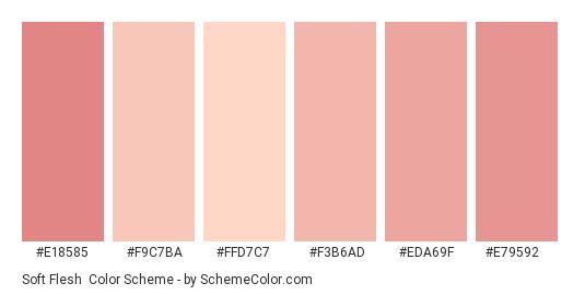 Soft Flesh - Color scheme palette thumbnail - #E18585 #F9C7BA #FFD7C7 #F3B6AD #EDA69F #E79592