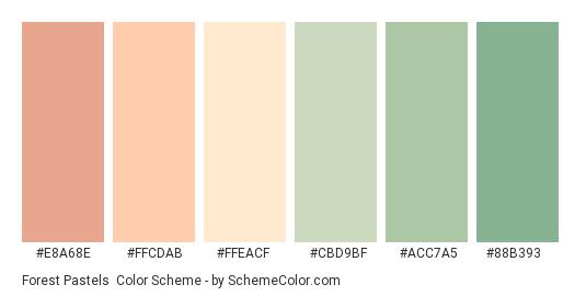 Forest Pastels - Color scheme palette thumbnail - #E8A68E #FFCDAB #FFEACF #CBD9BF #ACC7A5 #88B393
