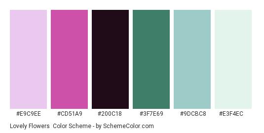Lovely Flowers - Color scheme palette thumbnail - #E9C9EE #CD51A9 #200C18 #3F7E69 #9DCBC8 #E3F4EC