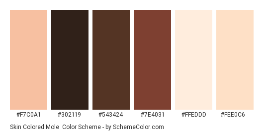 Skin Colored Mole - Color scheme palette thumbnail - #F7C0A1 #302119 #543424 #7E4031 #FFEDDD #FEE0C6