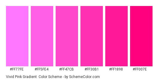 Vivid Pink Gradient - Color scheme palette thumbnail - #FF77FE #FF5FE4 #FF47CB #FF30B1 #FF1898 #FF007E