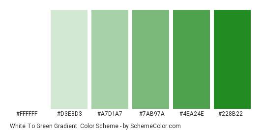 White to Green Gradient - Color scheme palette thumbnail - #FFFFFF #D3E8D3 #A7D1A7 #7AB97A #4EA24E #228B22