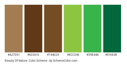 Beauty of Nature - Color scheme palette thumbnail - #a27d51 #603a16 #744d24 #8cc540 #39b44a #01683b