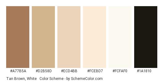 Tan Brown, White & Black - Color scheme palette thumbnail - #a77b5a #d2b58d #ecd4bb #fcebd7 #fcfaf0 #1a1810