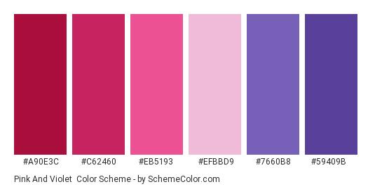 Pink and Violet - Color scheme palette thumbnail - #a90e3c #c62460 #eb5193 #efbbd9 #7660b8 #59409b