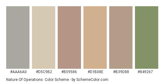 Nature of Operations - Color scheme palette thumbnail - #aaa6a0 #d5c9b2 #b59586 #d1b08e #b39d88 #849267