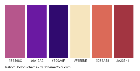 Reborn - Color scheme palette thumbnail - #b6568c #6a19a2 #300a6f #f6e5be #db6a58 #a23541