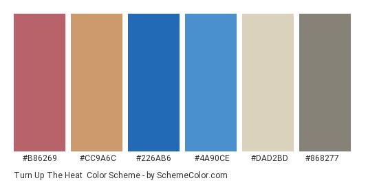 Turn Up The Heat - Color scheme palette thumbnail - #b86269 #cc9a6c #226ab6 #4a90ce #dad2bd #868277