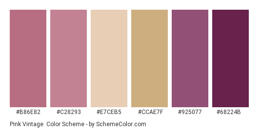 Pink Vintage - Color scheme palette thumbnail - #b86e82 #c28293 #e7ceb5 #ccae7f #925077 #68224b