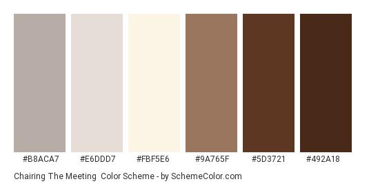 Chairing the Meeting - Color scheme palette thumbnail - #b8aca7 #e6ddd7 #fbf5e6 #9a765f #5d3721 #492a18