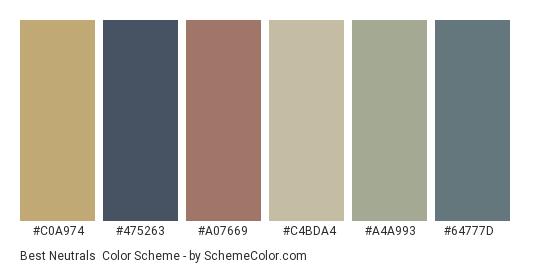 Best Neutrals - Color scheme palette thumbnail - #c0a974 #475263 #a07669 #c4bda4 #a4a993 #64777d