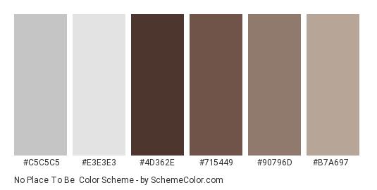 No Place to Be - Color scheme palette thumbnail - #c5c5c5 #e3e3e3 #4d362e #715449 #90796d #b7a697