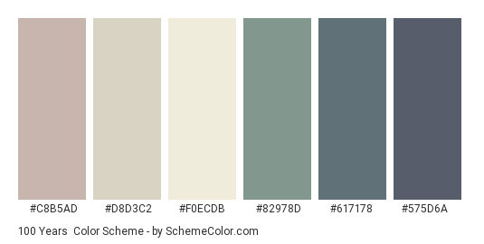100 Years - Color scheme palette thumbnail - #c8b5ad #d8d3c2 #f0ecdb #82978d #617178 #575d6a