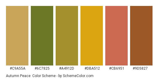 Autumn Peace - Color scheme palette thumbnail - #c9a55a #6c7825 #a4912d #dba512 #cb6951 #9d5827