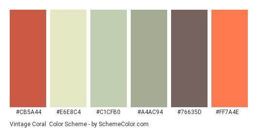 Vintage Coral - Color scheme palette thumbnail - #cb5a44 #e6e8c4 #c1cfb0 #a4ac94 #76635d #ff7a4e
