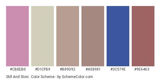 Still and Stoic - Color scheme palette thumbnail - #cb8eb0 #d1cfb9 #b89d92 #a58981 #3c579e #9e6463