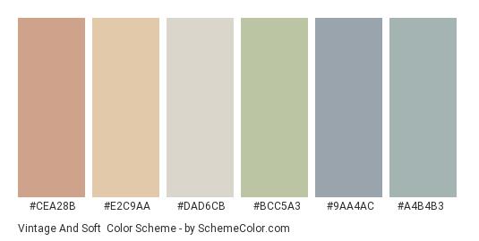 Vintage and Soft - Color scheme palette thumbnail - #cea28b #e2c9aa #dad6cb #bcc5a3 #9aa4ac #a4b4b3