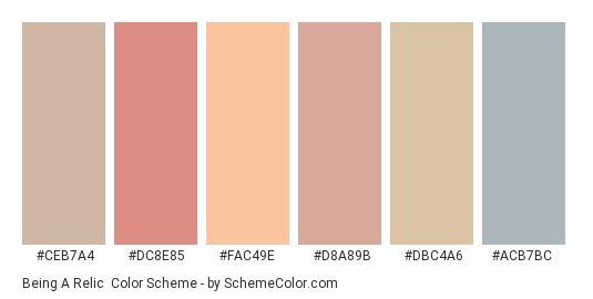Being a Relic - Color scheme palette thumbnail - #ceb7a4 #dc8e85 #fac49e #d8a89b #dbc4a6 #acb7bc