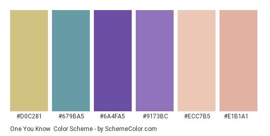 One You Know - Color scheme palette thumbnail - #d0c281 #679ba5 #6a4fa5 #9173bc #ecc7b5 #e1b1a1
