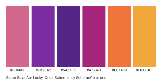 Some Guys are Lucky - Color scheme palette thumbnail - #d3688f #7B2EA2 #542786 #a5247c #ee743b #f0a73c