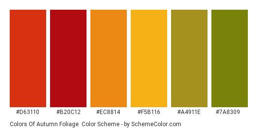 Colors of Autumn Foliage - Color scheme palette thumbnail - #d63110 #b20c12 #ec8814 #f5b116 #a4911e #7a8309