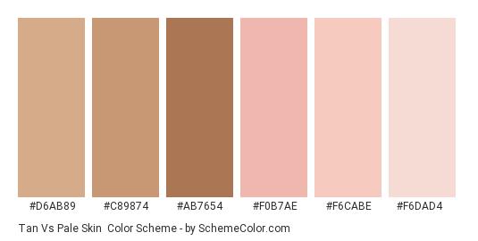 Tan vs Pale Skin - Color scheme palette thumbnail - #d6ab89 #c89874 #ab7654 #f0b7ae #f6cabe #f6dad4