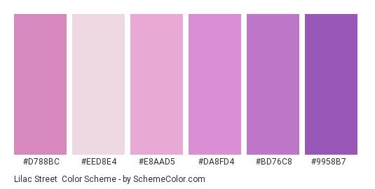 Lilac Street - Color scheme palette thumbnail - #d788bc #eed8e4 #e8aad5 #da8fd4 #bd76c8 #9958b7