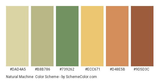 Natural Machine - Color scheme palette thumbnail - #dad4a5 #b8b786 #739262 #ecc671 #d48e5b #9d5d3c