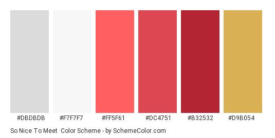 So Nice To Meet - Color scheme palette thumbnail - #dbdbdb #f7f7f7 #ff5f61 #dc4751 #b32532 #d9b054