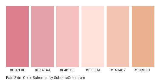 Pale Skin - Color scheme palette thumbnail - #dc7f8e #e5a1aa #f4bfbe #ffe0da #f4c4b2 #e8b08d