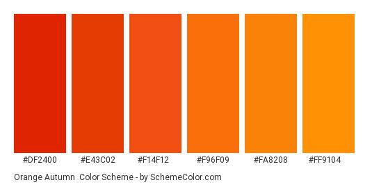 Orange Autumn - Color scheme palette thumbnail - #df2400 #e43c02 #f14f12 #f96f09 #fa8208 #ff9104