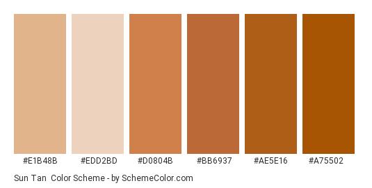 Sun Tan - Color scheme palette thumbnail - #e1b48b #edd2bd #d0804b #bb6937 #ae5e16 #a75502