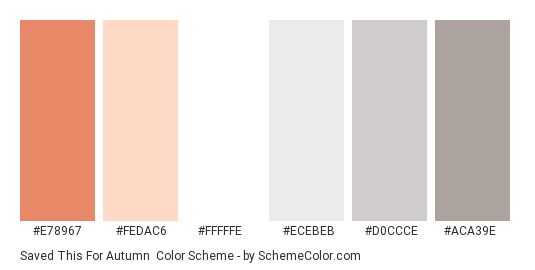 Saved This For Autumn - Color scheme palette thumbnail - #e78967 #fedac6 #fffffe #ecebeb #d0ccce #aca39e