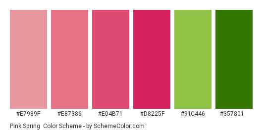 Pink Spring - Color scheme palette thumbnail - #e7989f #e87386 #e04b71 #d8225f #91c446 #357801