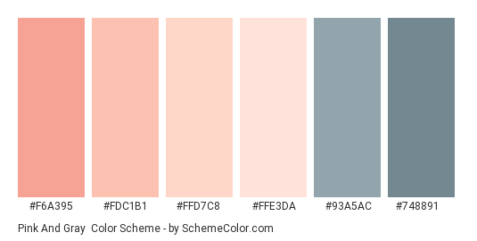 Pink and Gray - Color scheme palette thumbnail - #f6a395 #fdc1b1 #ffd7c8 #ffe3da #93a5ac #748891