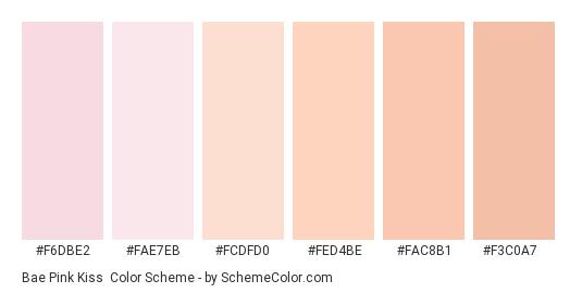 Bae Pink Kiss - Color scheme palette thumbnail - #f6dbe2 #fae7eb #fcdfd0 #fed4be #fac8b1 #f3c0a7