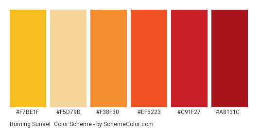 Burning Sunset - Color scheme palette thumbnail - #f7be1f #f5d79b #f38f30 #ef5223 #c91f27 #a8131c