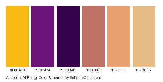 Anatomy of Being - Color scheme palette thumbnail - #f8ba10 #6c147a #36034b #c07065 #e79f6e #e7bb85
