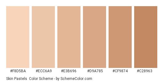 Skin Pastels - Color scheme palette thumbnail - #f8d5ba #ecc6a9 #e3b696 #d9a785 #cf9874 #c28963