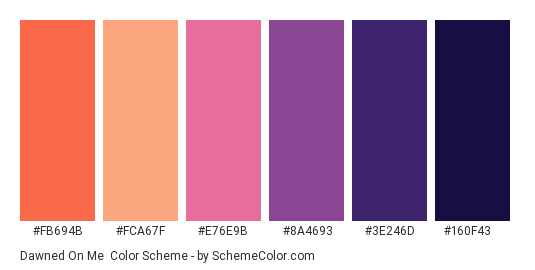 Dawned on Me - Color scheme palette thumbnail - #fb694b #fca67f #e76e9b #8a4693 #3e246d #160f43